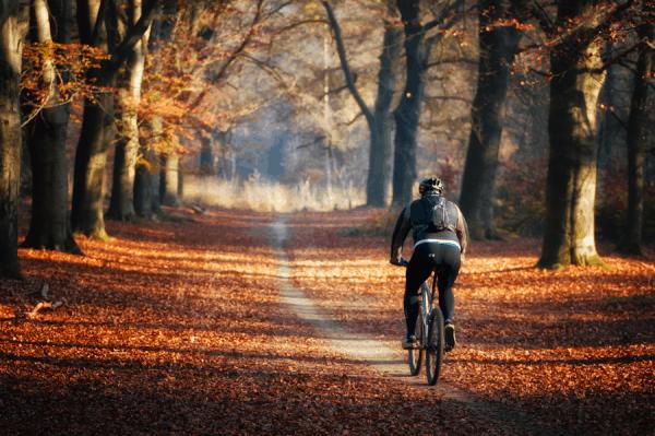 Fall Riding Webinar