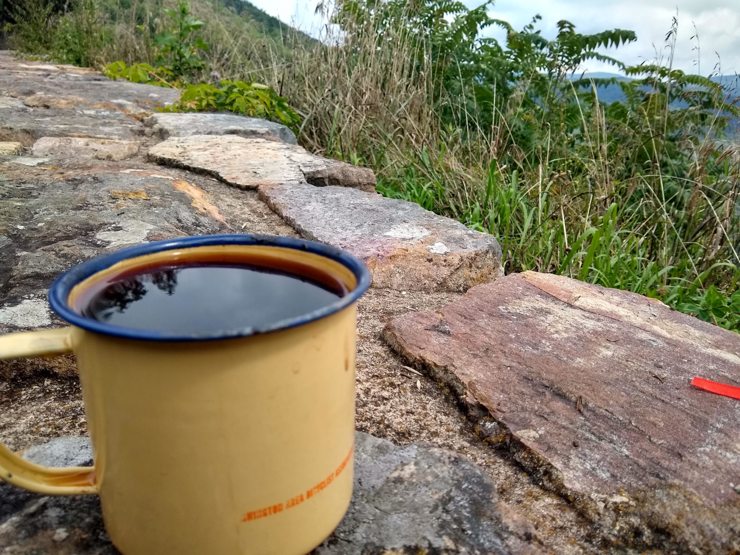 A metal WABA coffee mug sits on a rock ledge, there are grasses and trees behind. Its a nice vague generic artsy coffee on ledge vibe.