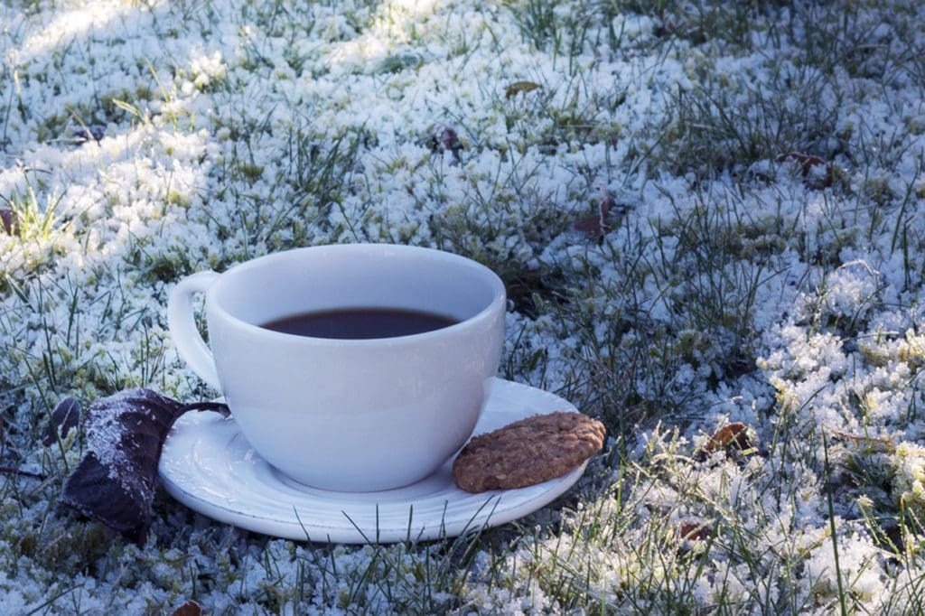 Large coffee cup sits on a saucer in a heavy snow dusting. Its a absurd winter image that is about the vibes and not practicality